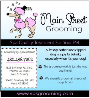 Featured image for Main Street Grooming