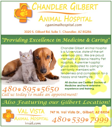 Logo for Chandler Gilbert Animal Hospital & Val Vista Animal Hospital